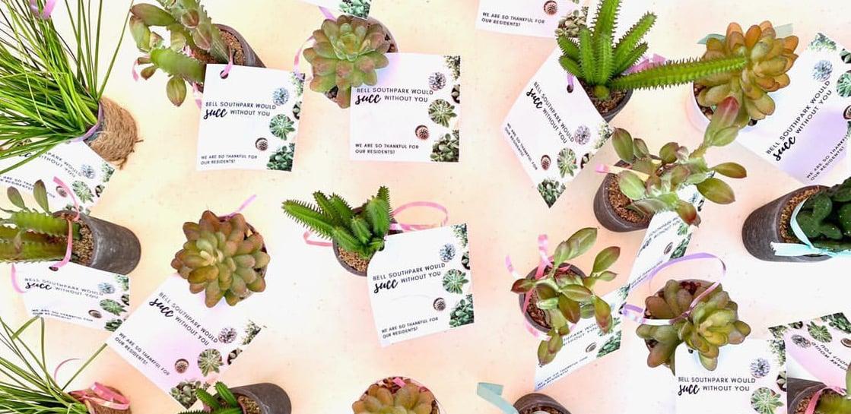 AL Plant Party 00-2