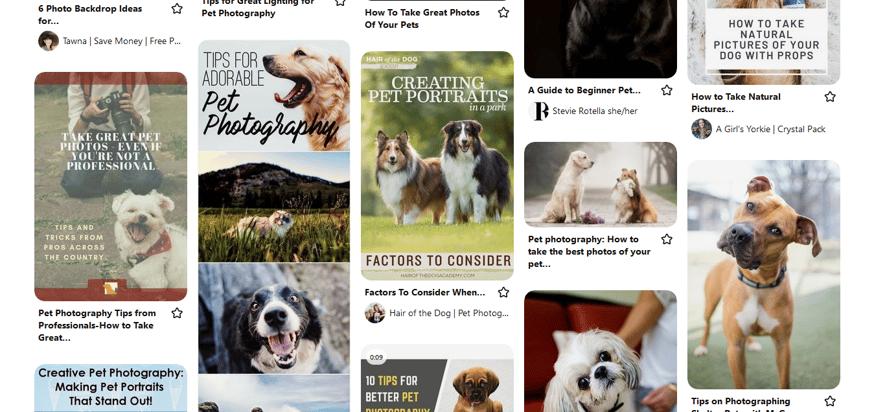 Screenshot_2021-05-21 Pinterest